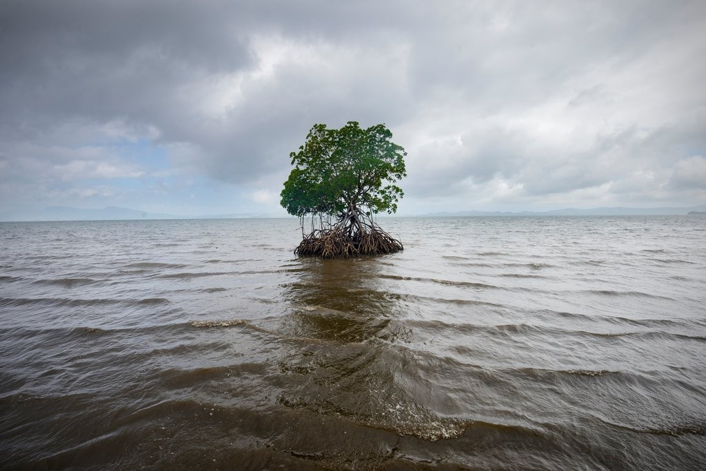 climate-fiji-slide-5046-jumbo